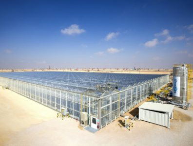 GlassPoint Amal EOR project