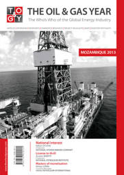 The Oil & Gas Year Mozambique 2013 Book Cover