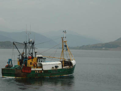 Total Shetland assets