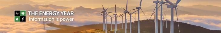 The Energy Year 2021