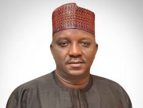 H.E. Engr. Sale MAMMAN Nigerian Minister of Power